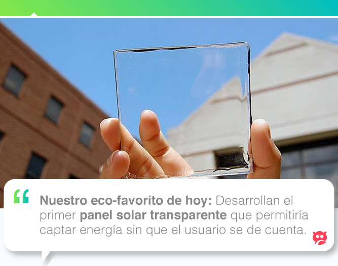 ecofavorito_panelsolartransparente